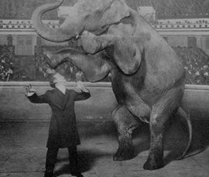 "harry houdini performing his ""the disappearing elephant"" trick"
